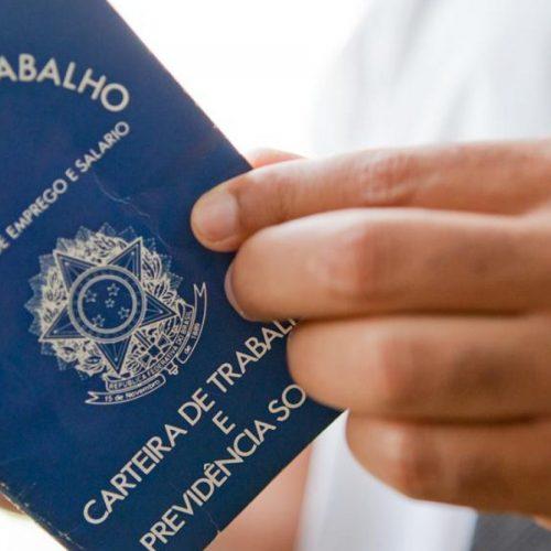 No Piauí, 60 mil pessoas conseguiram trabalho no último trimestre de 2020, diz IBGE