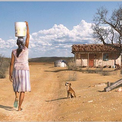 Família no sertão do Piauí leva 36 dias por ano procurando água para consumo humano