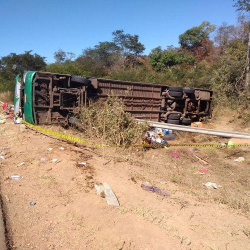 'Acidente com 9 mortos aconteceu porque motorista tentou evitar colisão', diz delegado