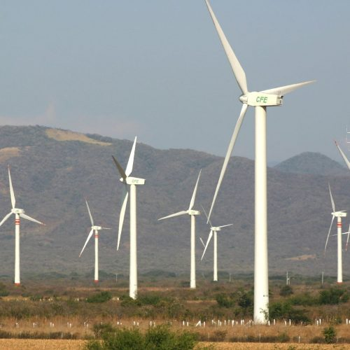 Empresa estuda implantação de nova usina eólica com capacidade de 500MW no Piauí