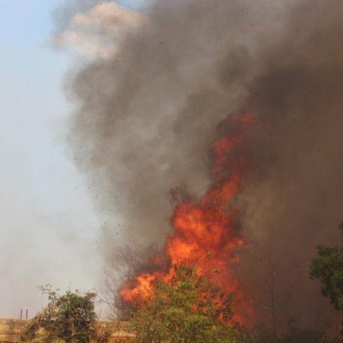 Piauí teve de dois a três incêndios a cada dia de julho, diz Corpo de Bombeiros