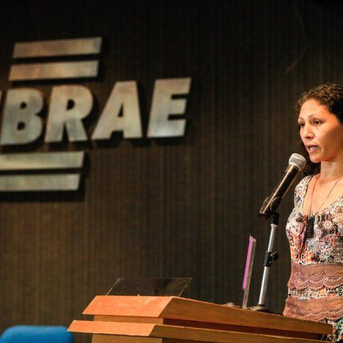 Artesã jaicoense vence Prêmio Sebrae Mulher de Negócios no Piauí