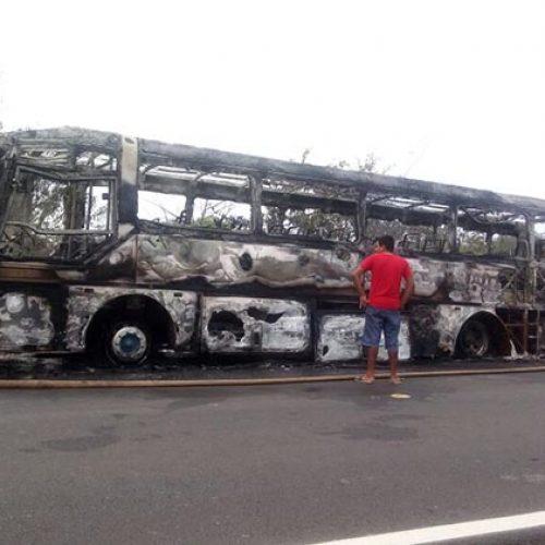 Ônibus pega fogo e fica destruído em BR no Piauí; veja flagrante