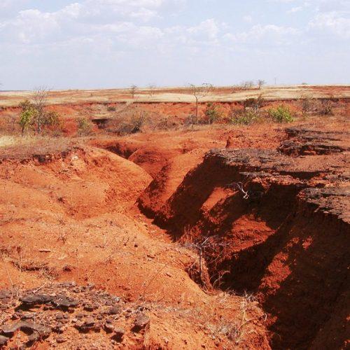 Audiência pública debate problema da desertificação no Piauí