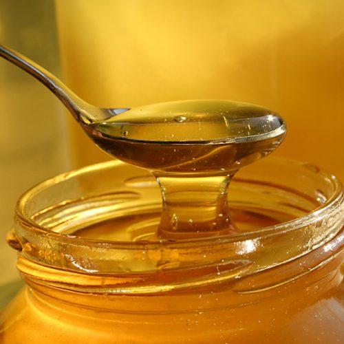 Piauí é o maior produtor de mel do país e exporta o produto até para Europa; Assista