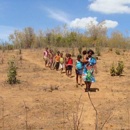 Seca causa prejuízo de R$ 132 milhões em 50 municípios do Piauí; veja a lista