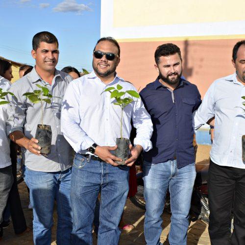 Jacobina do PI comemora 'Dia da Árvore' com evento de conscientização e mudas são plantadas