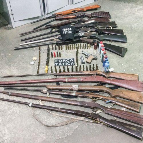 Polícia apreende 14 armas de fogo em Monsenhor Hipólito