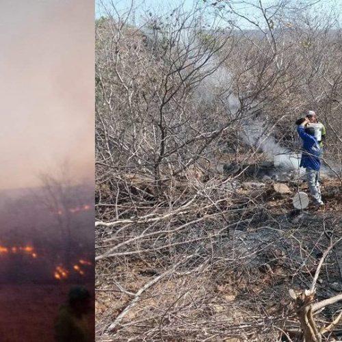 Incêndio florestal de grandes proporções causa destruição em Santana do Piauí
