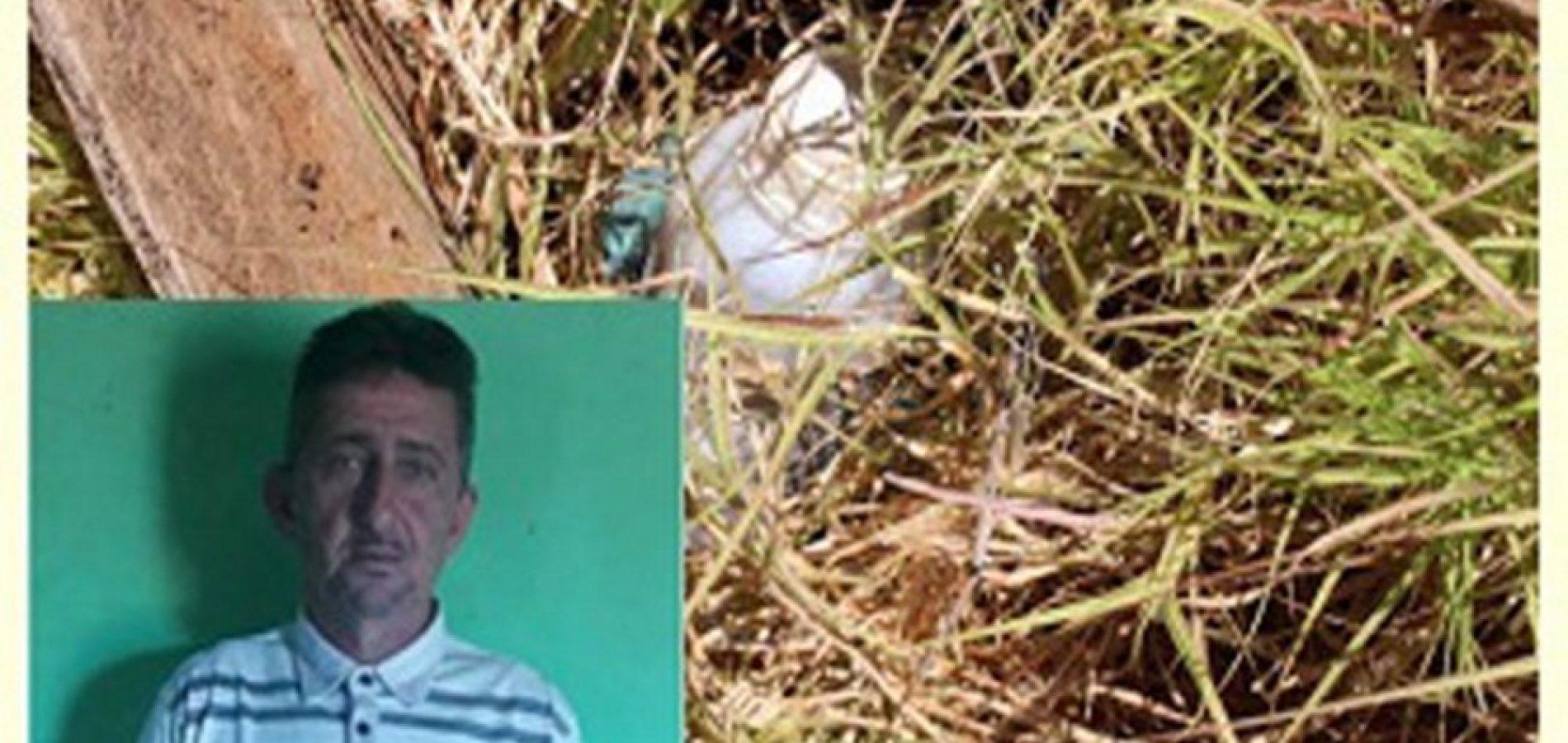 Homem é encontrado morto na zona rural de Acauã
