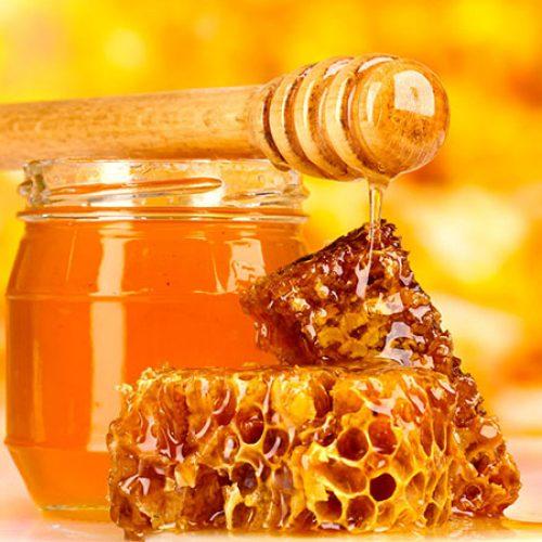Piauí cai da 3ª para 7ª posição no ranking nacional na produção de mel