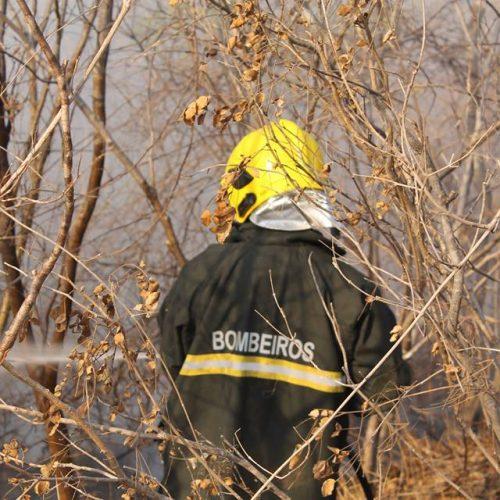Piauí tem 2.991 focos de incêndio no mês de outubro, segundo Inpe