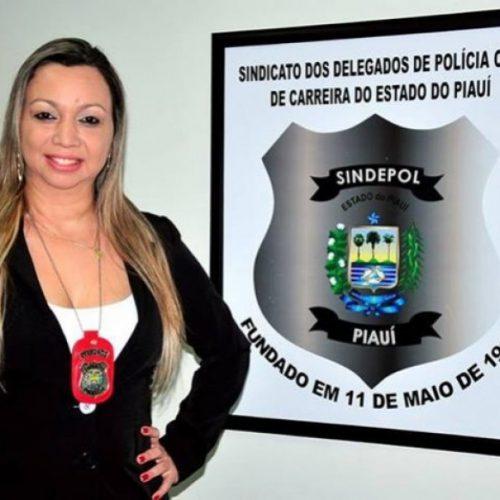 Sindicato se defende de acusação da falta de delegados no interior do Piauí