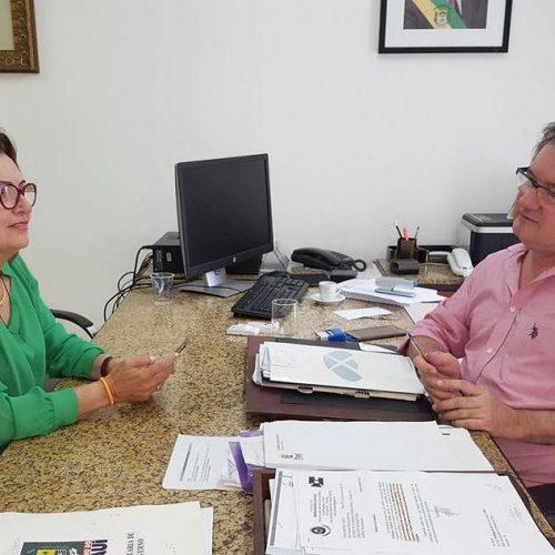 Secretária de Educação de Fronteiras é recebida pelo deputado Merlong Solano em Teresina