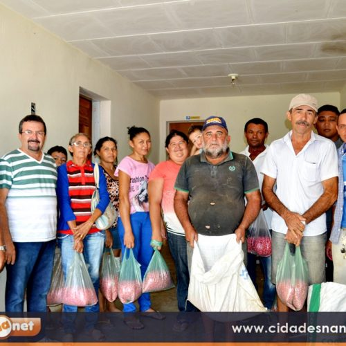 Prefeitura de Francisco Macedo distribui meia tonelada de sementes a agricultores familiares; fotos