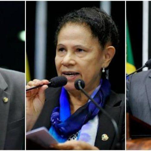 Senadores piauienses custaram mais de R$ 2,6 milhões no último ano