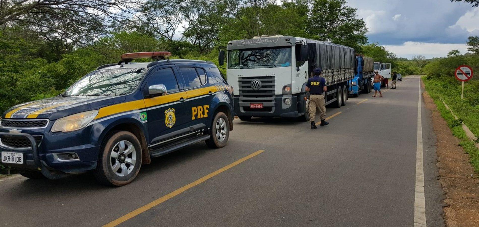 PRF apreende 100 toneladas de madeira com documento do Ibama falsificado no PI
