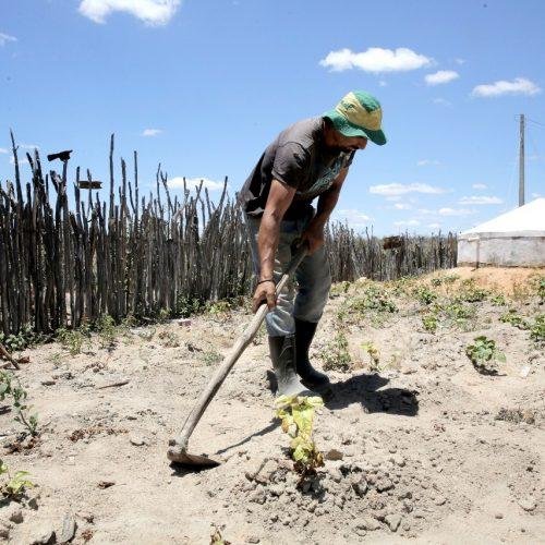 Garantia Safra beneficia 422 agricultores em Curral Novo do Piauí