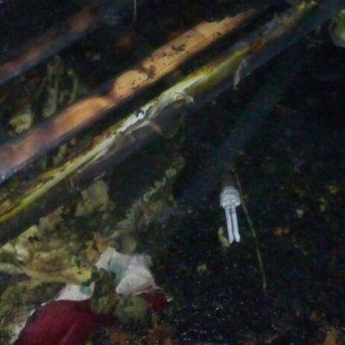 Carregador explode na tomada e incendeia residência no Sul do Piauí