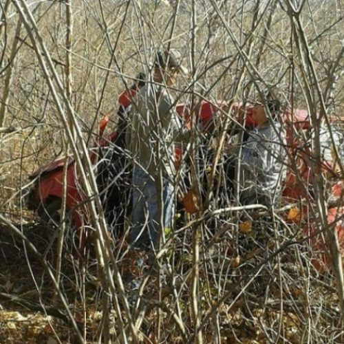 Acidente deixa uma pessoa morta e criança de 11 anos ferida na BR-230