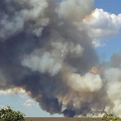 Incêndios aumentam no Piauí e chegam a 311 em apenas um dia