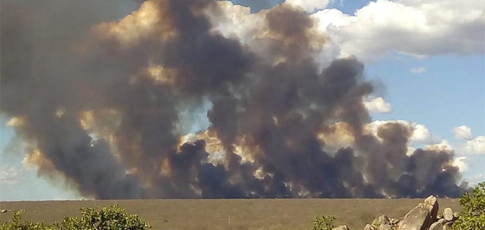 B-R-O BRÓ começa e 3 mil focos de incêndio são registrados em quatro dias