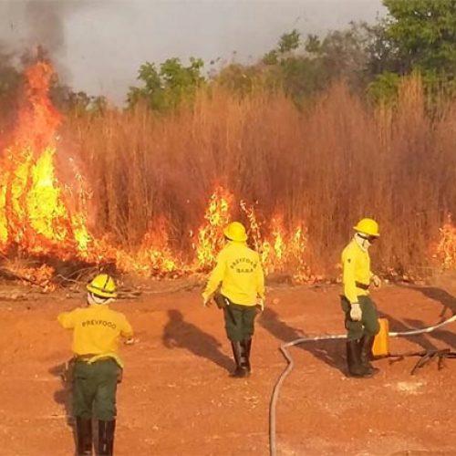 Agosto e setembro já concentram 75% dos registros de queimadas durante o ano
