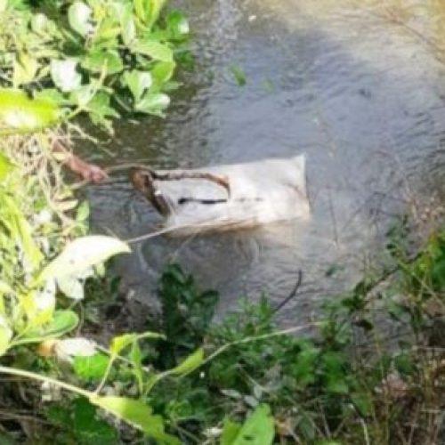 Corpo de jovem é encontrado boiando dentro de saco em um rio no Piauí