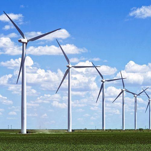 Mudança de regras eleva preço de energia para novos projetos eólicos