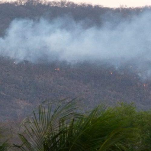 Piauí registra 212 incêndios em apenas uma semana