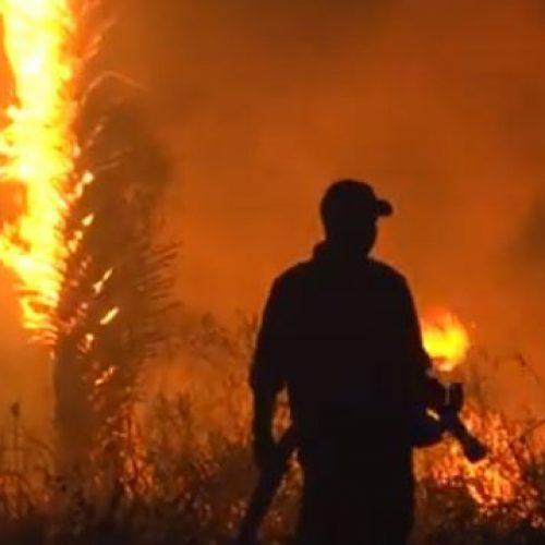 Incêndio de grandes proporções é registrado e assusta moradores do Piauí