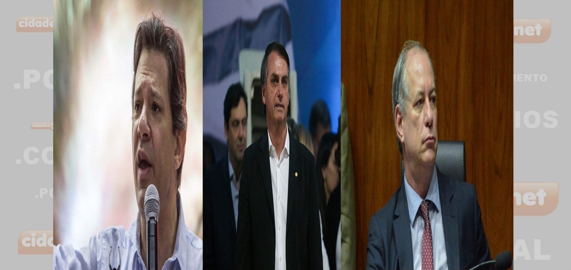 Fernando Haddad tem 41%, Bolsonaro e Ciro empatados no Piauí, revela Opinar