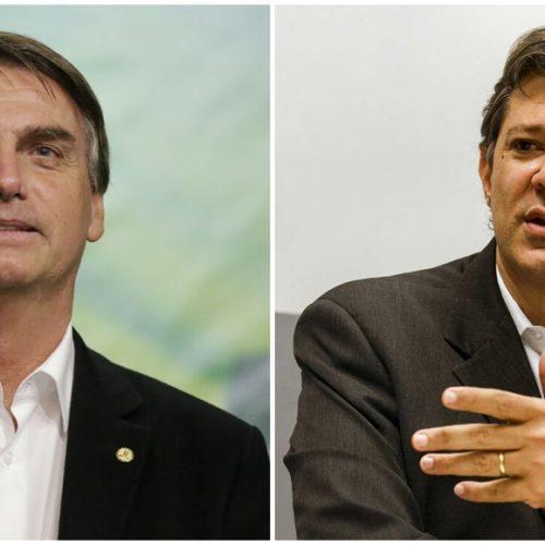 Jair Bolsonaro com 31,2% e Haddad com 20,2%, diz Paraná Pesquisa