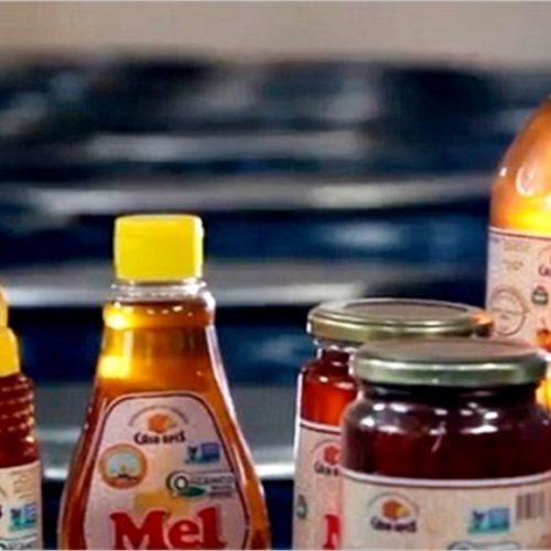 Produção de mel do PI cresce e gera quase R$ 45 milhões, aponta IBGE