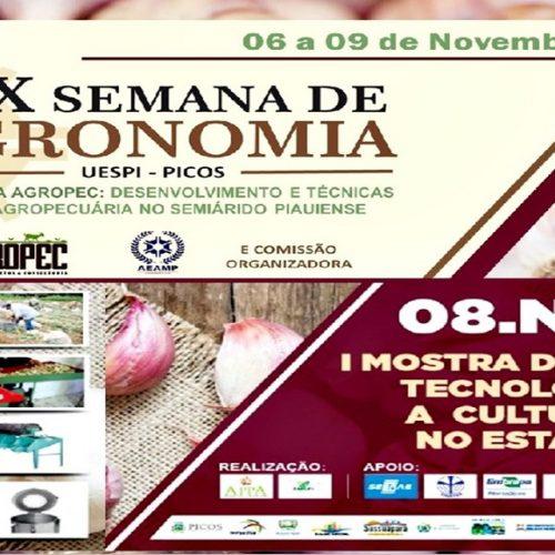 Produtores de Alho promovem 1ª Mostra de Inovações Tecnológicas para Cultura do Alho no Piauí