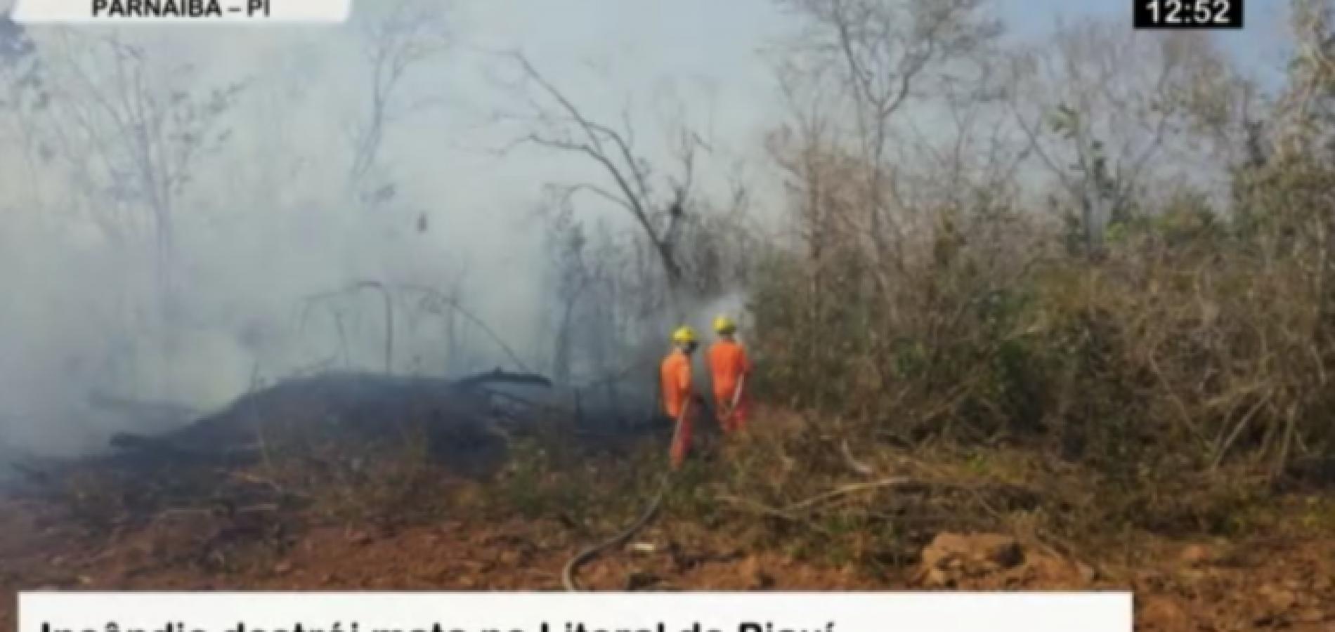 Incêndio já dura 4 dias e ameaça Subestação de Energia no Piauí