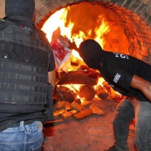 Polícia civil incinera mais de 30 quilos de drogas em Picos