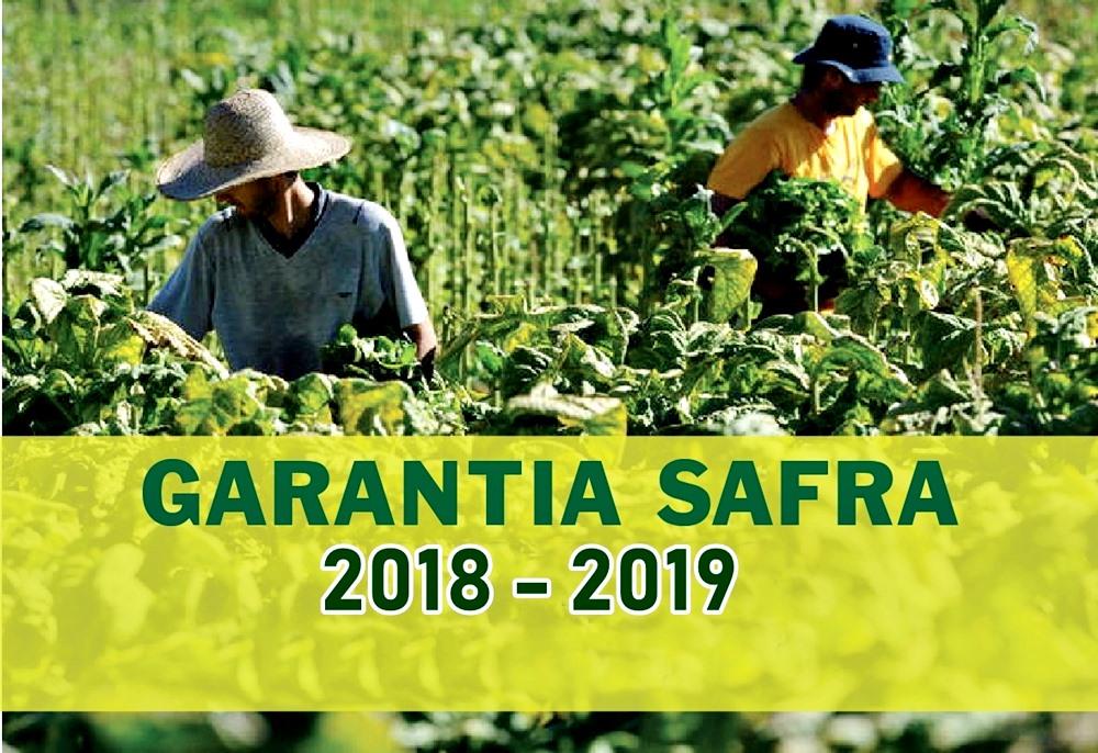 Resultado de imagem para SAFRA 2018/2019