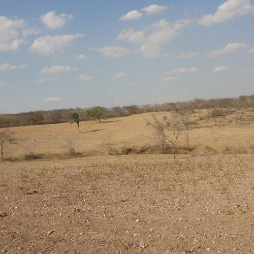 Monitor aponta seca a longo prazos no sudeste do Piauí
