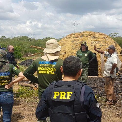 Operação destrói carvoarias e aplica quase R$ 60 mil em multas por crimes ambientais no Piauí