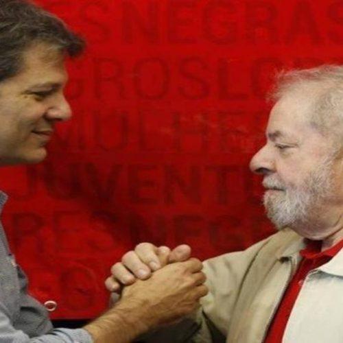 Haddad visita Lula pela primeira vez após as eleições