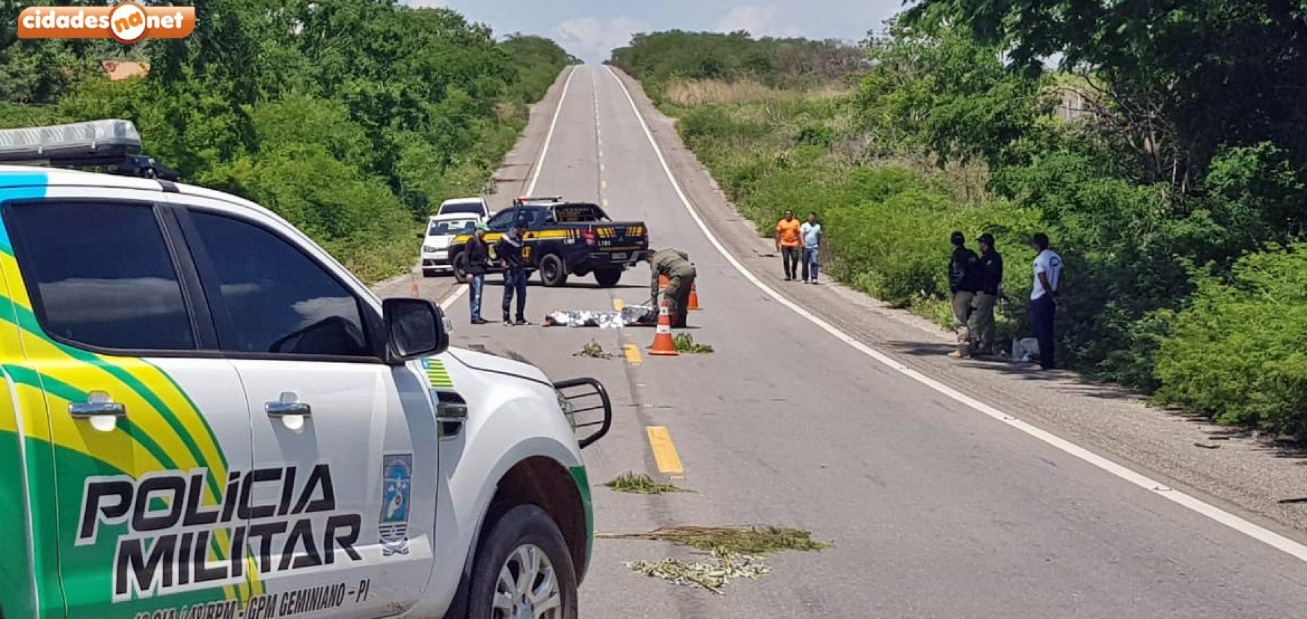 Acidente deixa homem morto na BR 407, em Geminiano; veja imagens