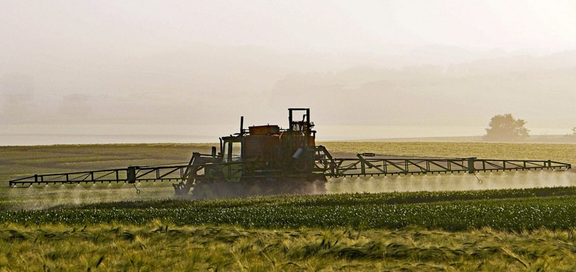Aprovado projeto de lei que reduz uso de agrotóxicos