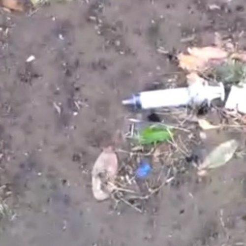 Chuva arrasta lixo hospitalar e derruba teto de escola no Piauí