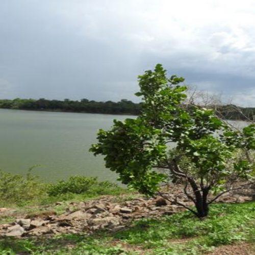 Risco: barragem de cidade do Piauí pode causar estrago maior que Brumadinho