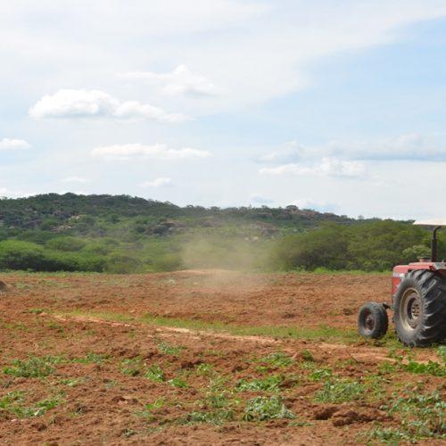 Programa de aração de terra incentiva a agricultura familiar em Caldeirão Grande do PI