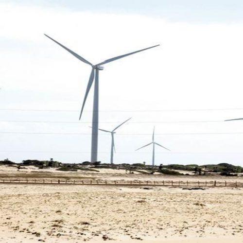 Piauí é a nova fronteira para o mercado de energia eólica no Brasil