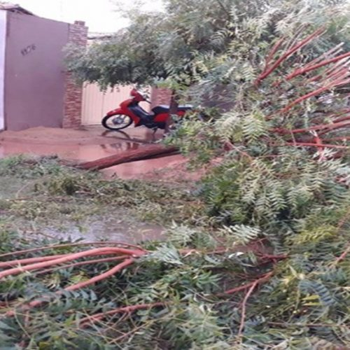 Chuva de granizo e ventania causam destruição em cidade do Piauí