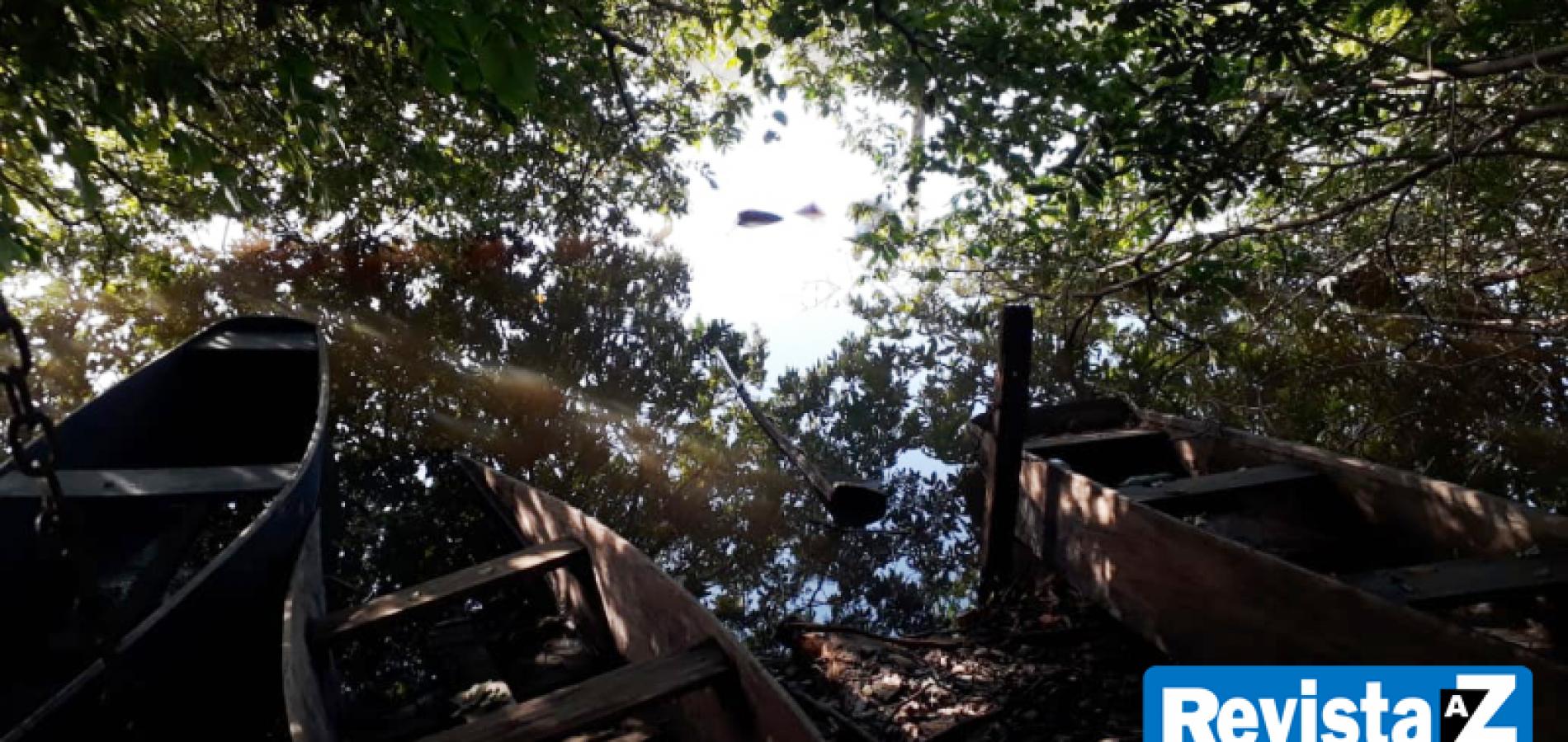 Corpo é encontrado boiando às margens de rio no Piauí
