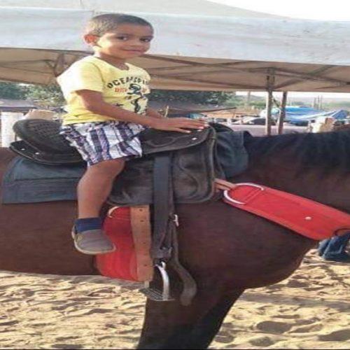 Criança de 5 anos morre atropelada na BR-135